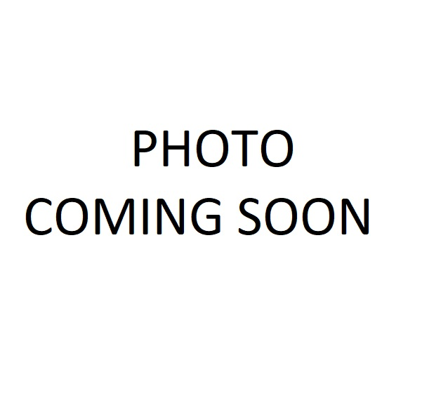 LG. MINT FLOWER WALL ART